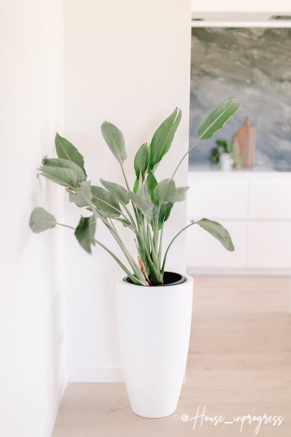 pot-fleur-blanc-haut-interieur-exterieur